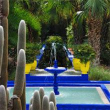 Сад Мажорель в Марракеш