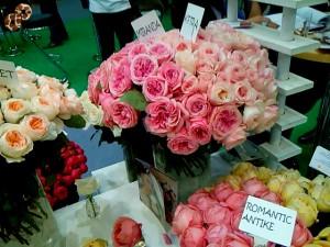 антикварные розы