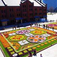 Цветочный сад 2015 весна